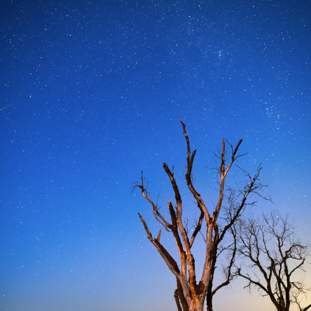 """Stars in the Night Sky Over a Natural Landscape"" stock image"
