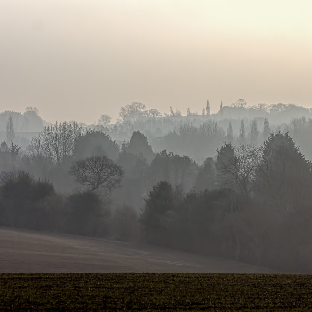 """Misty morning in the Cotswolds: Cool Grey"" stock image"
