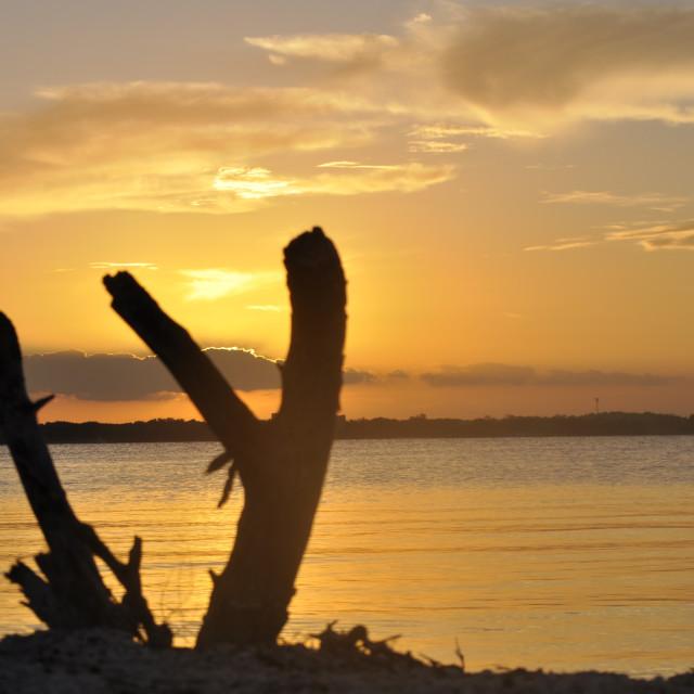 """""""sunset beauty"""" stock image"""