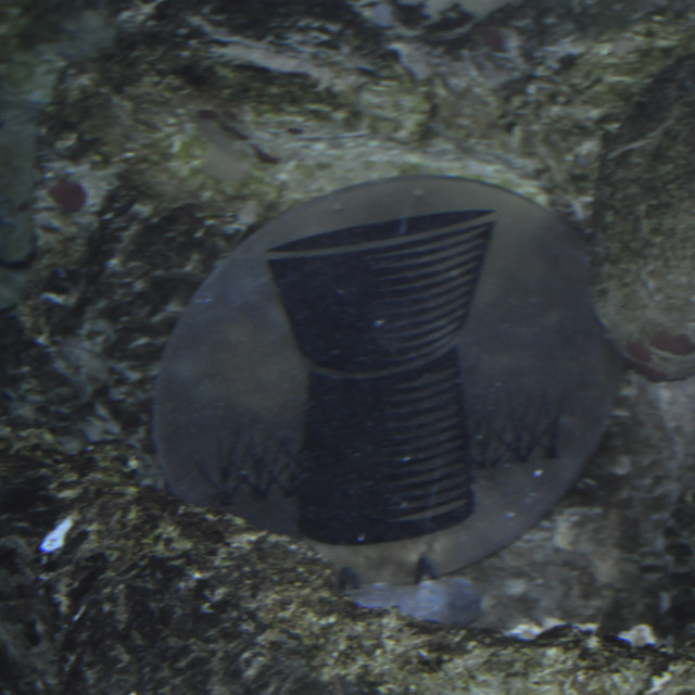 """Underwater latte stone"" stock image"