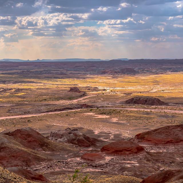 """The American Southwest / Arizona / New Mexico"" stock image"