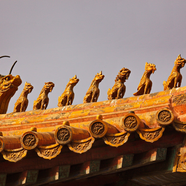 """""""Forbidden City Roof Detail"""" stock image"""