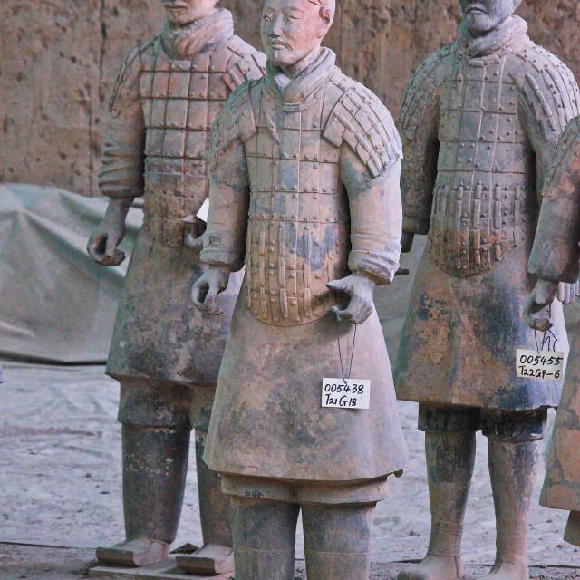 """Terracotta Warriors"" stock image"