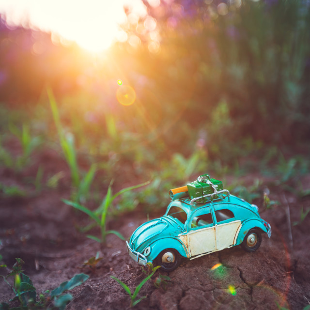 """Miniature retro car in a lavender flower in the field."" stock image"