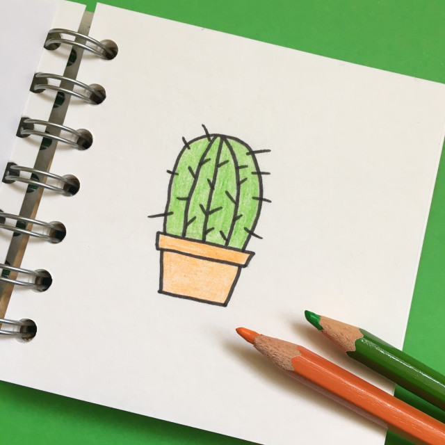 """Simple drawing of a cactus in a book with crayons"" stock image"