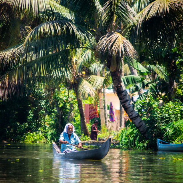"""Man on a boat in Backwaters, Kerala"" stock image"