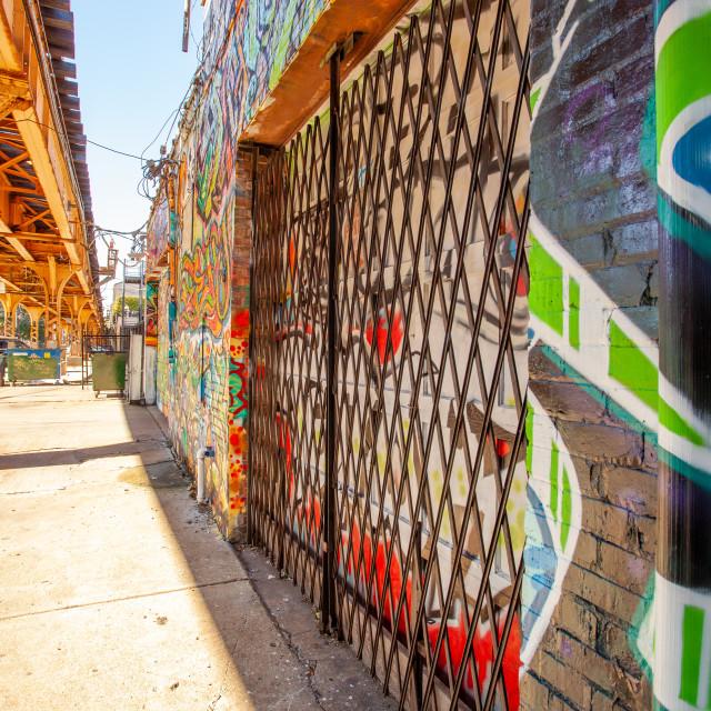 """Chicago Urbanscape 1"" stock image"
