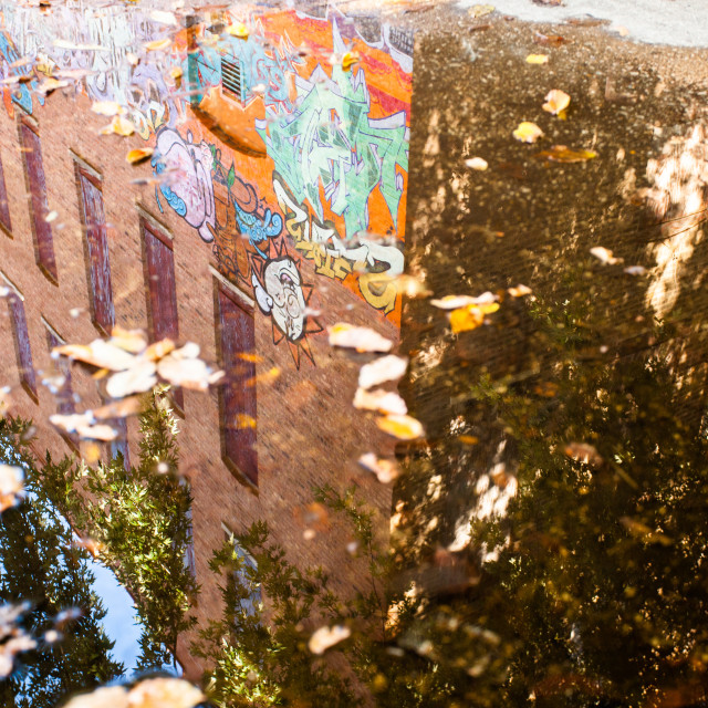 """""""Wicker Park Reflections"""" stock image"""