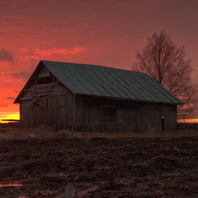 """Beautiful Springtime Sunset"" stock image"