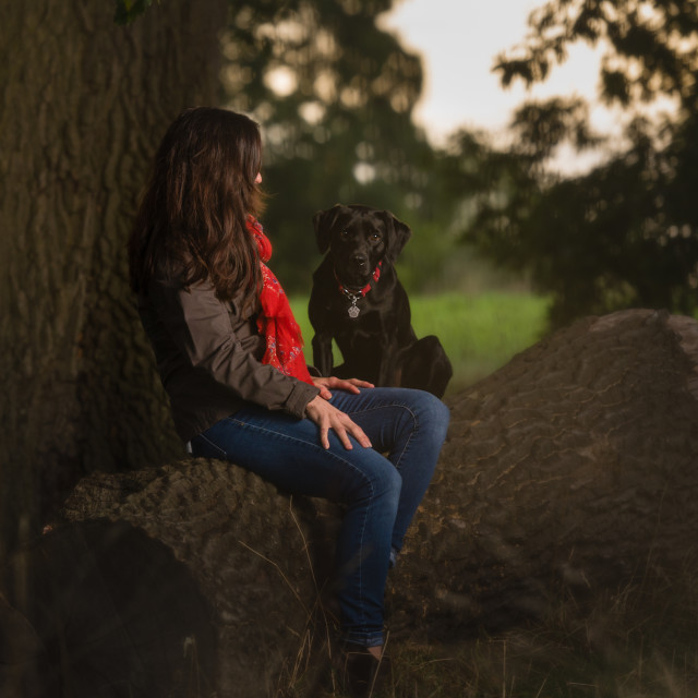 """Black Lab dog and owner in park iii."" stock image"