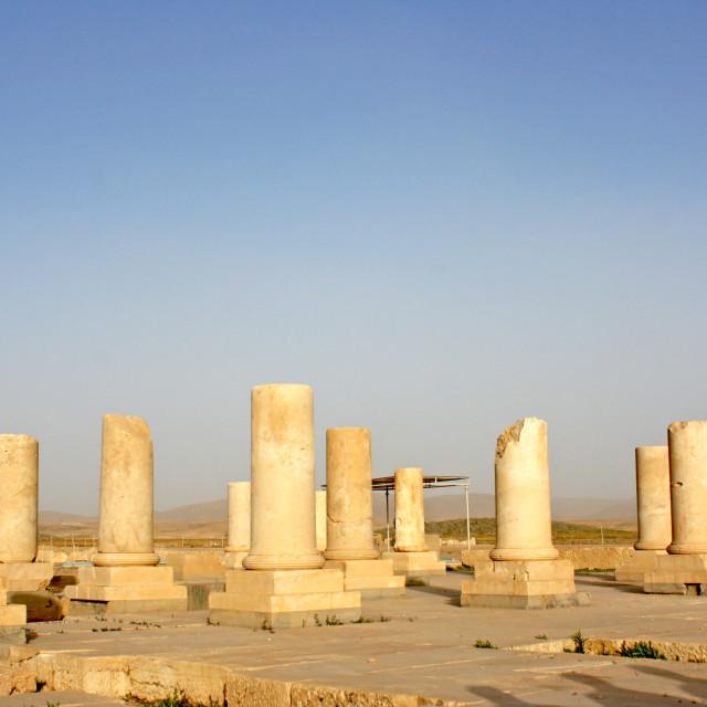 """Pasargad in Shiraz City- Iran"" stock image"