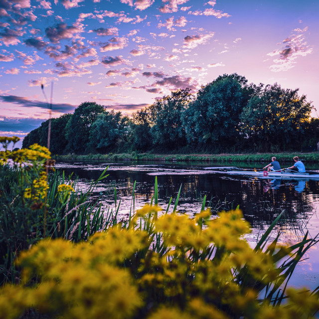 """""""Rowing on the River Cam, Blue hour."""" stock image"""