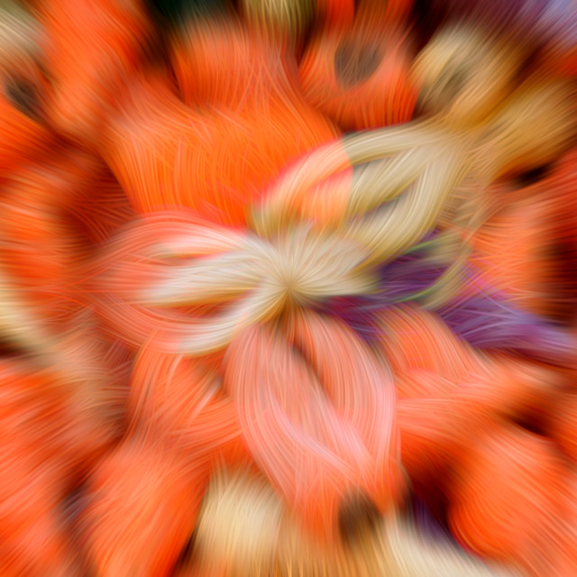"""Abstract background of multi-colored carrots"" stock image"