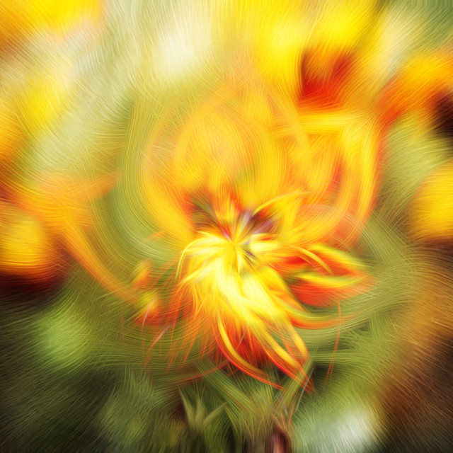 """Abstract background of spring flowers in full bloom"" stock image"
