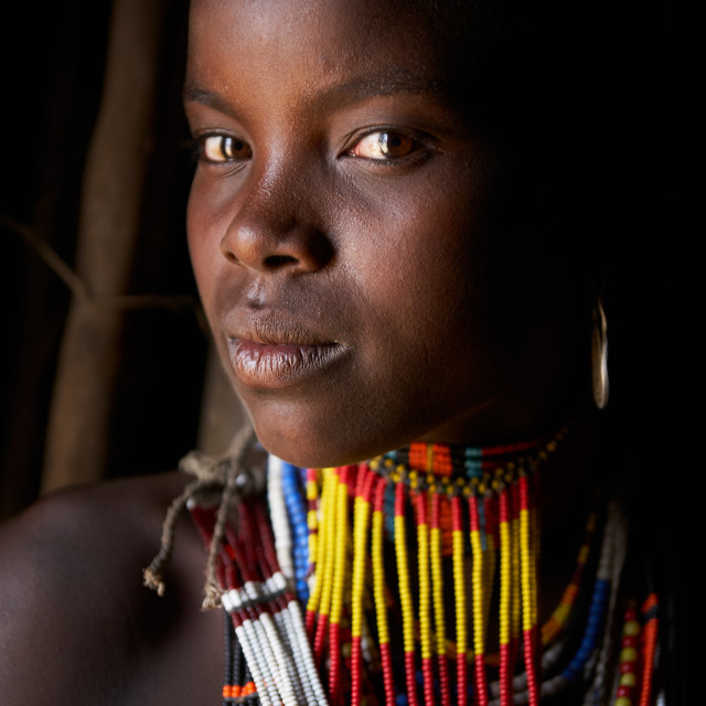 """""""Young Lady of the Hamer Tribe"""" stock image"""