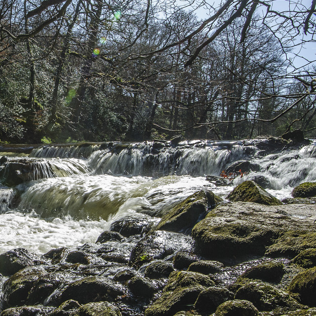 """""""Fish Ladder on the river Teign, Dartmoor"""" stock image"""