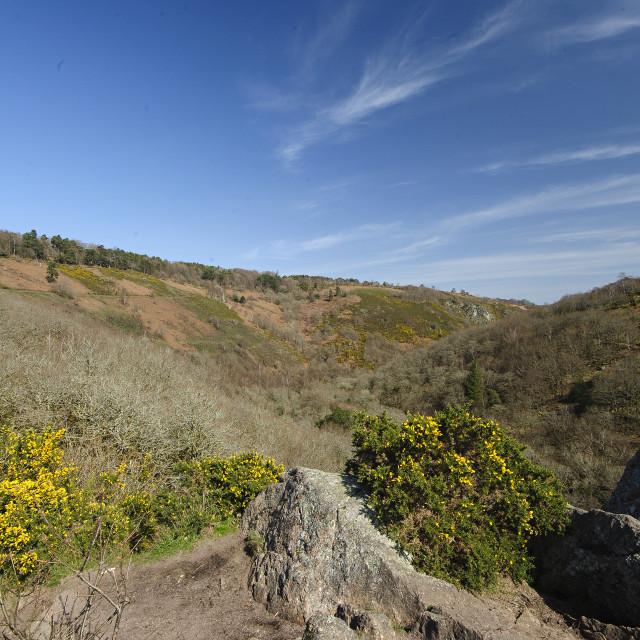 """Teign Gorge, Dartmoor, Devon"" stock image"