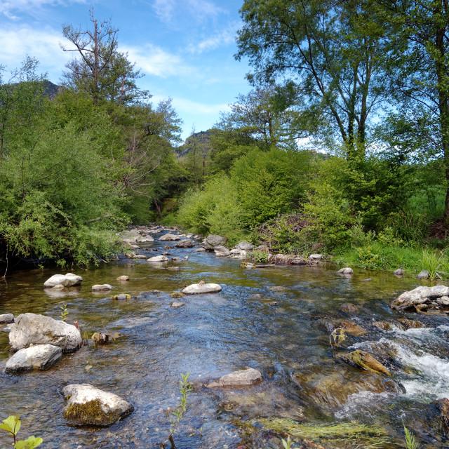 """""""Bucatoggio river"""" stock image"""