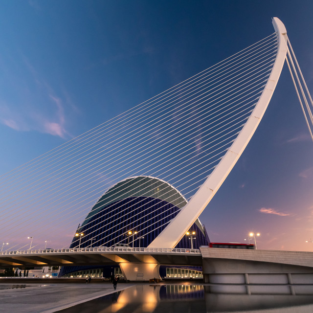 """""""City of Arts and Sciences"""" stock image"""