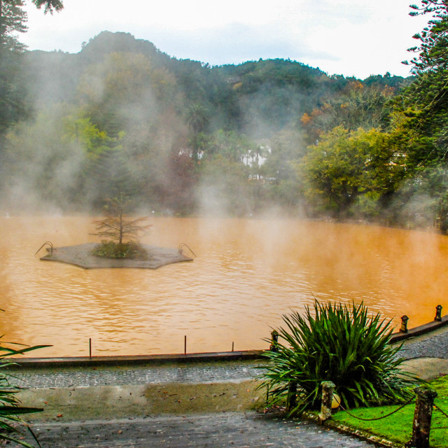 """""""Iron thermal lake, Terra Nostra Botanical Park"""" stock image"""