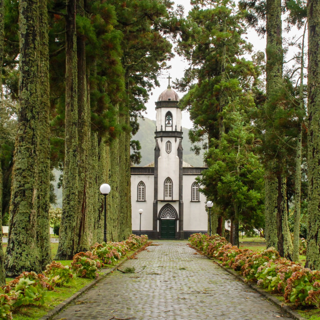"""""""Church lined by trees, Azores Islands"""" stock image"""