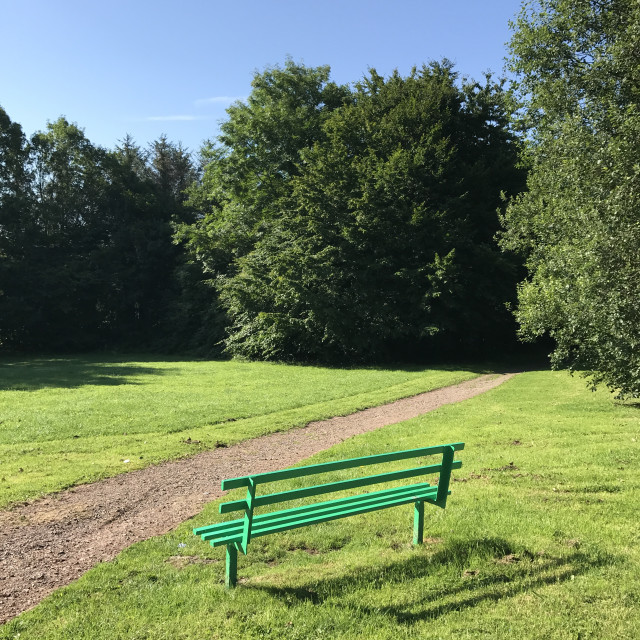 """""""Wooden bench in a public park. Space for copy"""" stock image"""