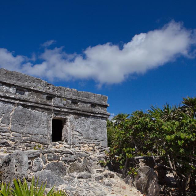 """Aztec Ruin"" stock image"