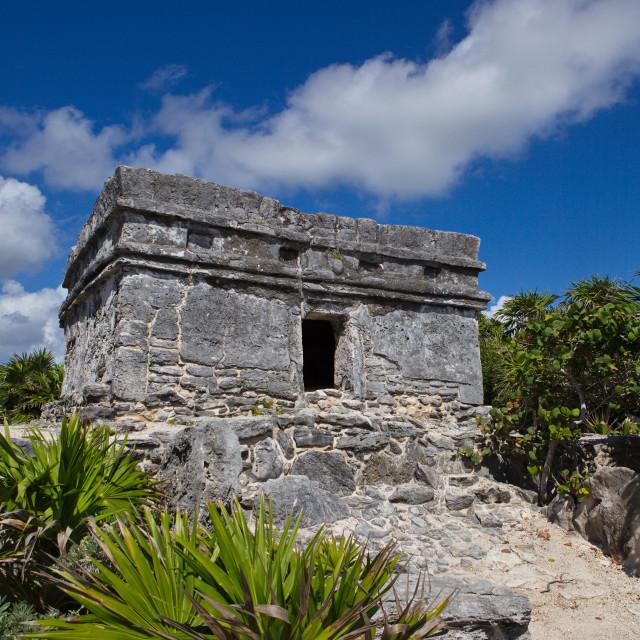 """""""Aztec Ruin Vertical"""" stock image"""
