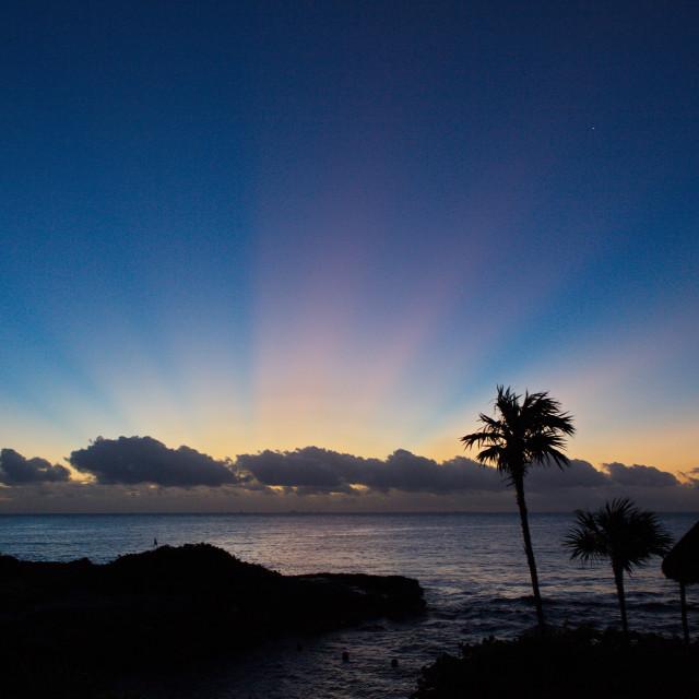"""Tropical Sunrise"" stock image"