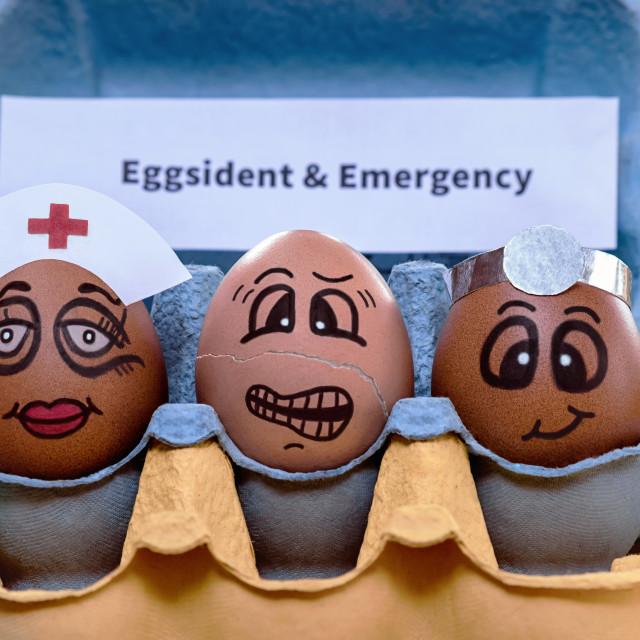 """""""Eggsident & Emergency"""" stock image"""