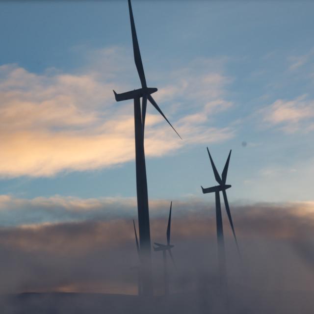 """""""Arctic Power"""" stock image"""