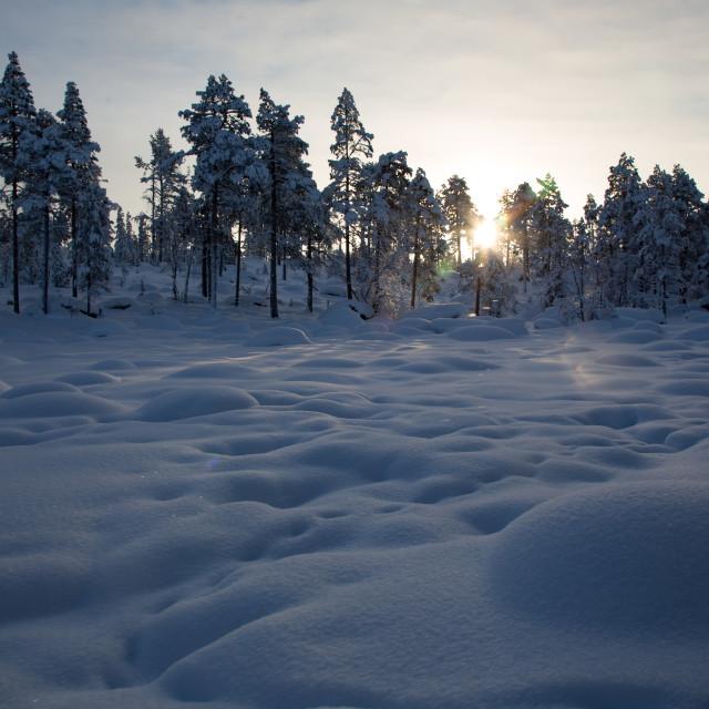 """Arctic Mogul Field"" stock image"