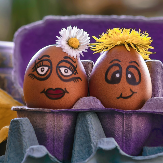 """""""Time to get eggcited!"""" stock image"""