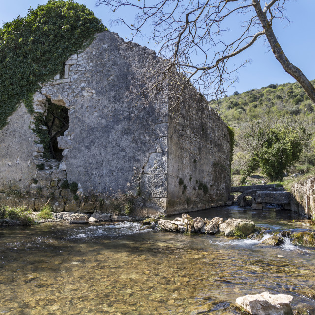 """""""Ruined ivy covered old mill"""" stock image"""