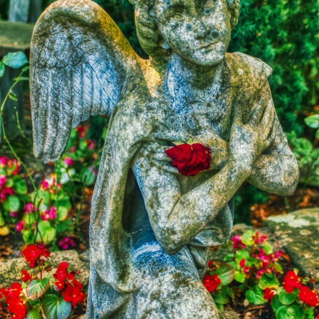 """""""Angel of Mercy"""" stock image"""