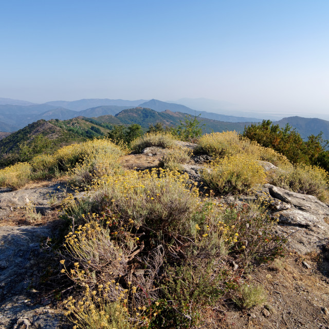 """Olmeli peak"" stock image"