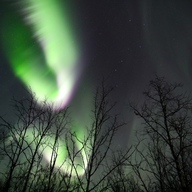 """Aurora Dance"" stock image"