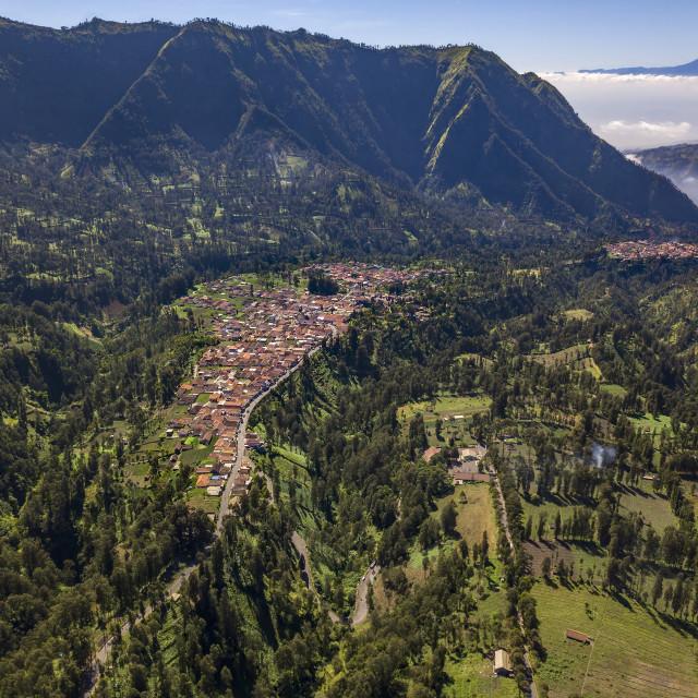 """""""Villages in Probolinggo Regency"""" stock image"""