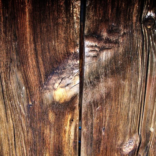 """Woodheart"" stock image"