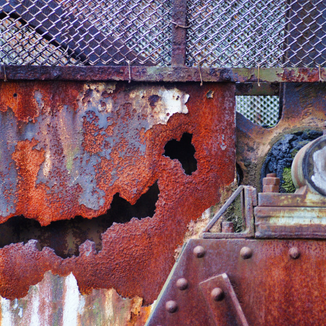 """""""Smiling rust"""" stock image"""