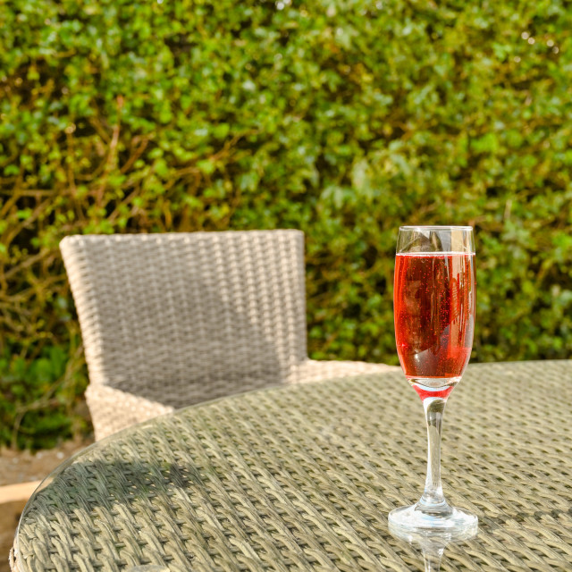 """Single flute glass of pink champagne on a glass table top in a garden."" stock image"