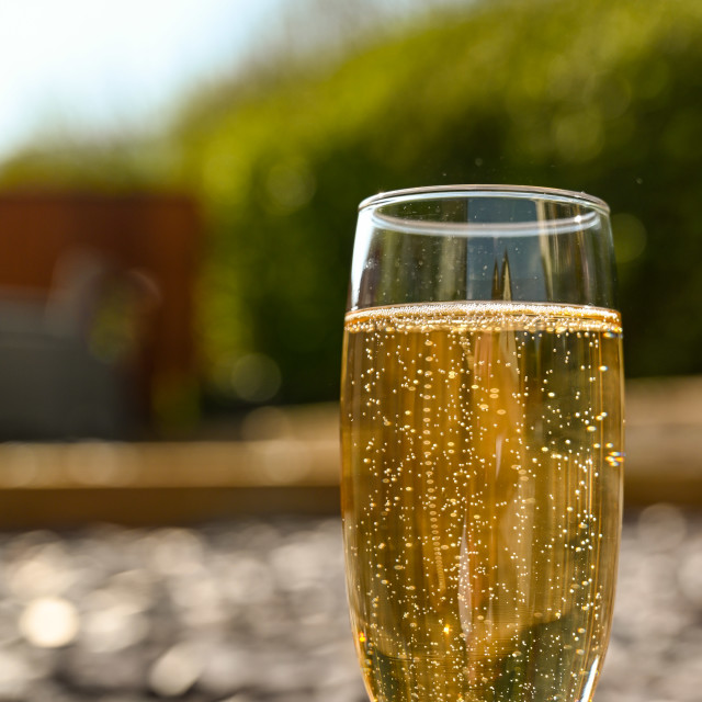 """Close up view of a single flute glass of champagne outdoors"" stock image"