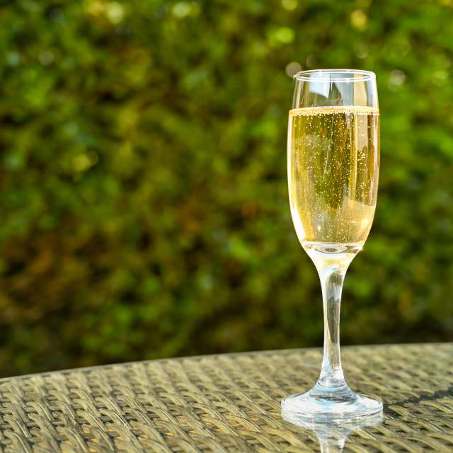 """""""Single flute glass of champagne on the glass table top"""" stock image"""