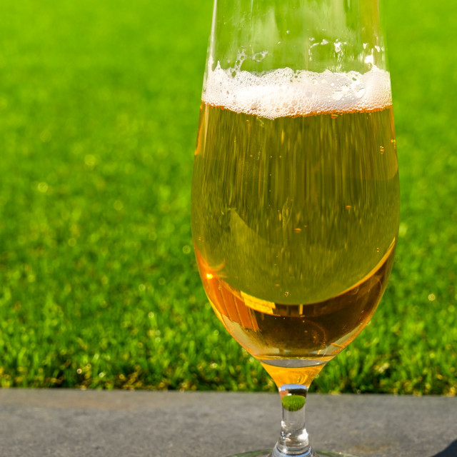 """Glass of golden beer lager standing on top of a garden wall"" stock image"