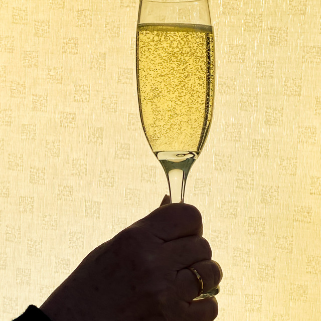"""Single flute glass of champagne being held up against a plain background"" stock image"