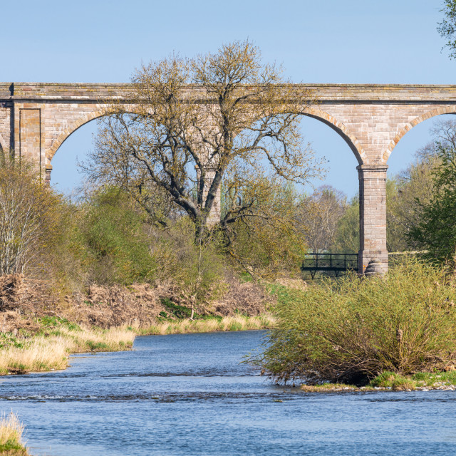 """Roxburgh Viaduct, Teviot River, Scotland"" stock image"