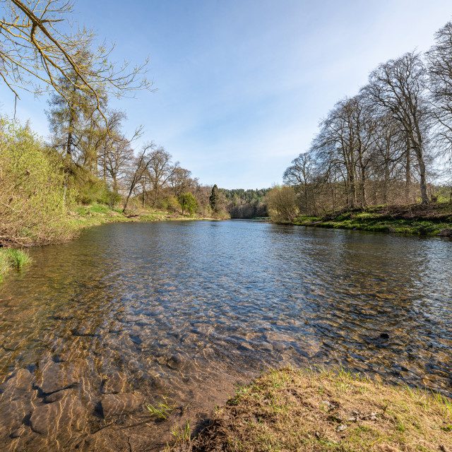 """The Teviot near Kelso"" stock image"