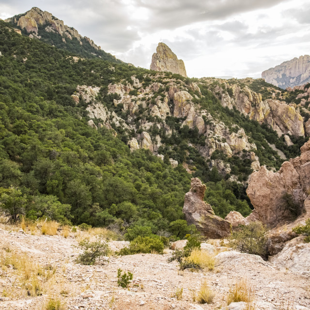 """""""Woman hiking in the Chiricahua Mountains above Cave Creek Canyon near Portal;..."""" stock image"""