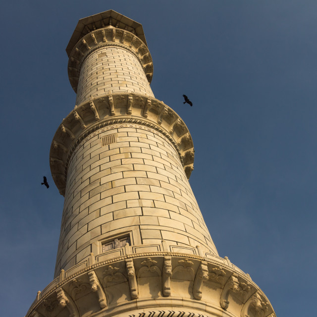 """The Taj Mahal's minaret with two birds"" stock image"