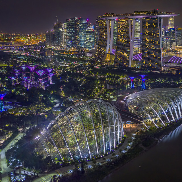 """""""Gardens By The Bay at Night 02"""" stock image"""